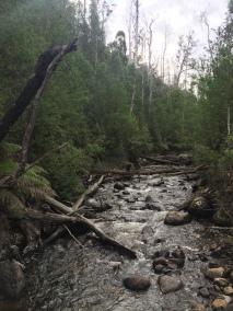 O'Shannassy River