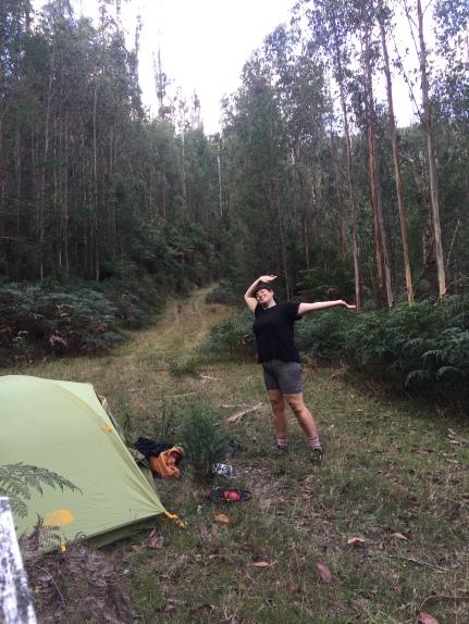 Dork in camp
